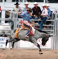 Blue Allen competing in rodeo on old photo